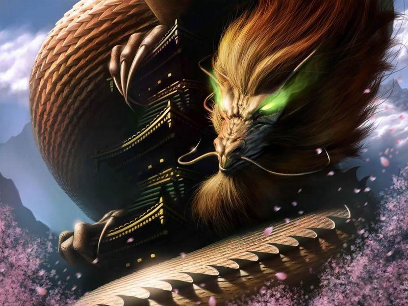 Dragon chino  Dragon%20Chino_800
