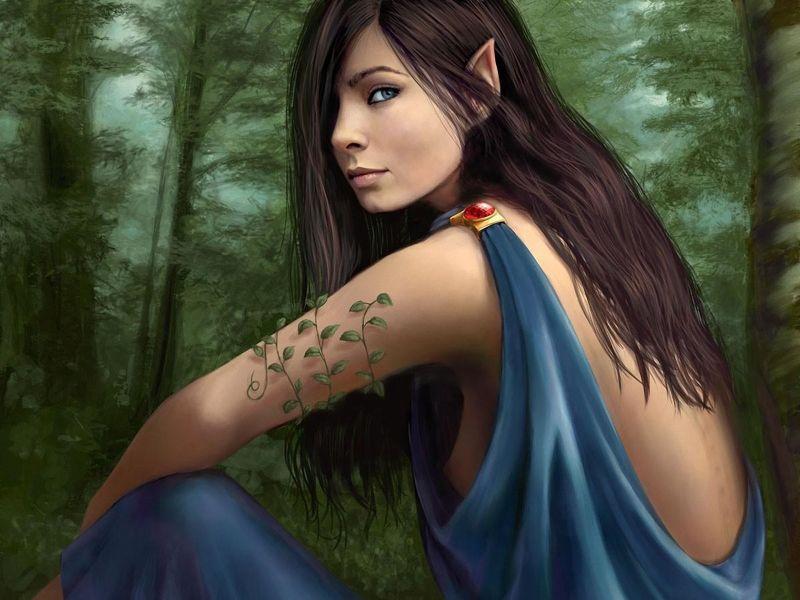 Bosque de Elfa
