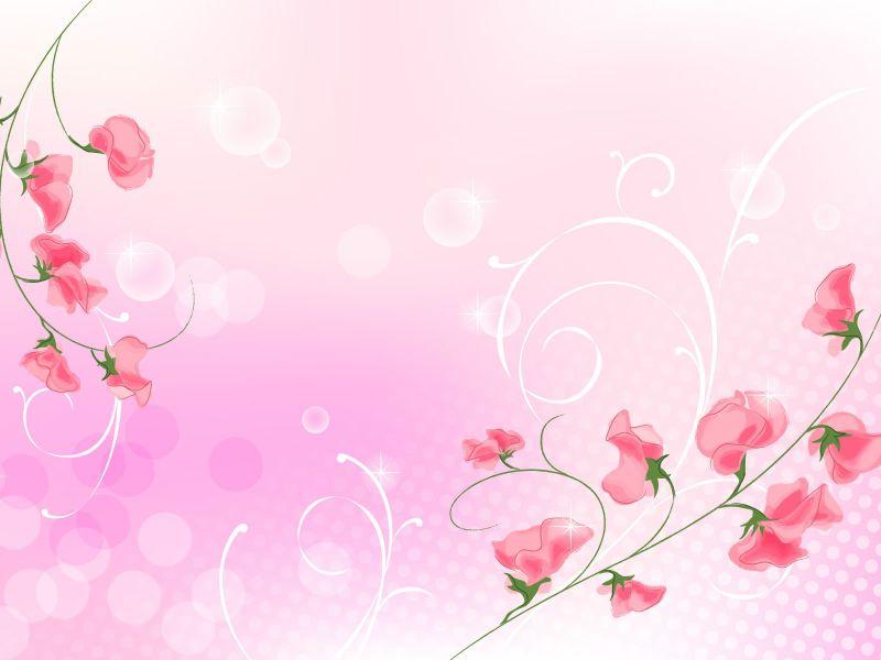 fondos de pantalla de Flores Rosa 8. wallpapers de Flores Rosa 8