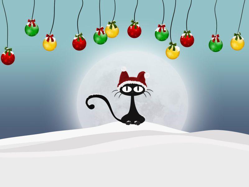 Gato Navidades