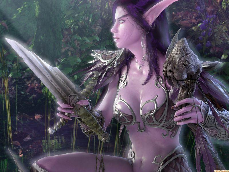 La Guerrera Elfa