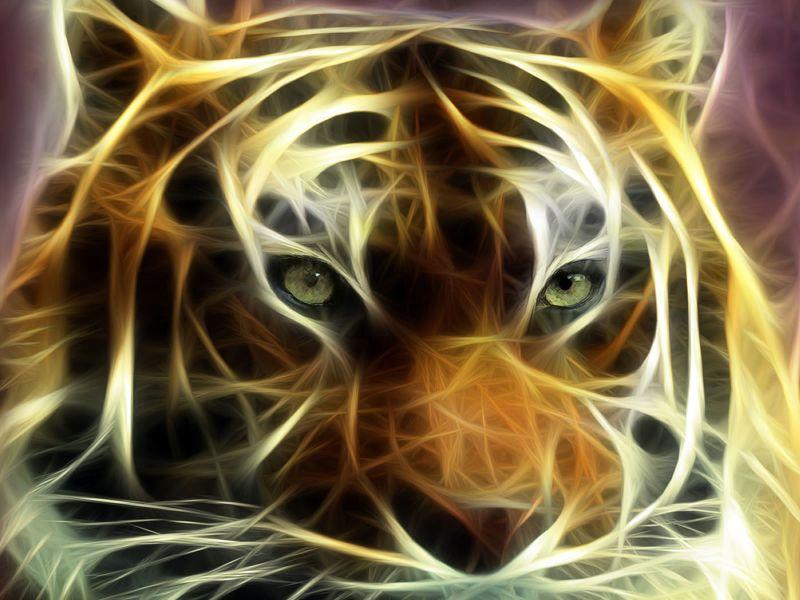 Fondos de Pantalla / Tigres / Tigre Artistico
