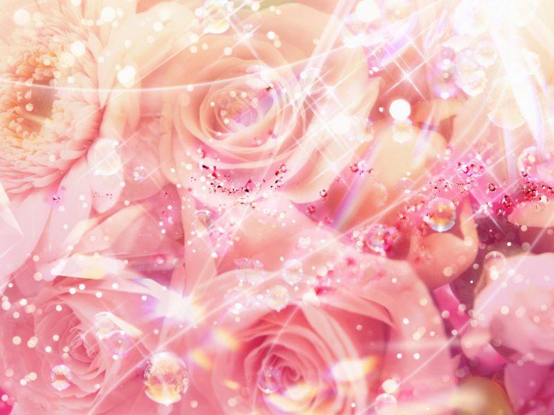 Fondos De Pantalla   Amor   Rosas Brillantes