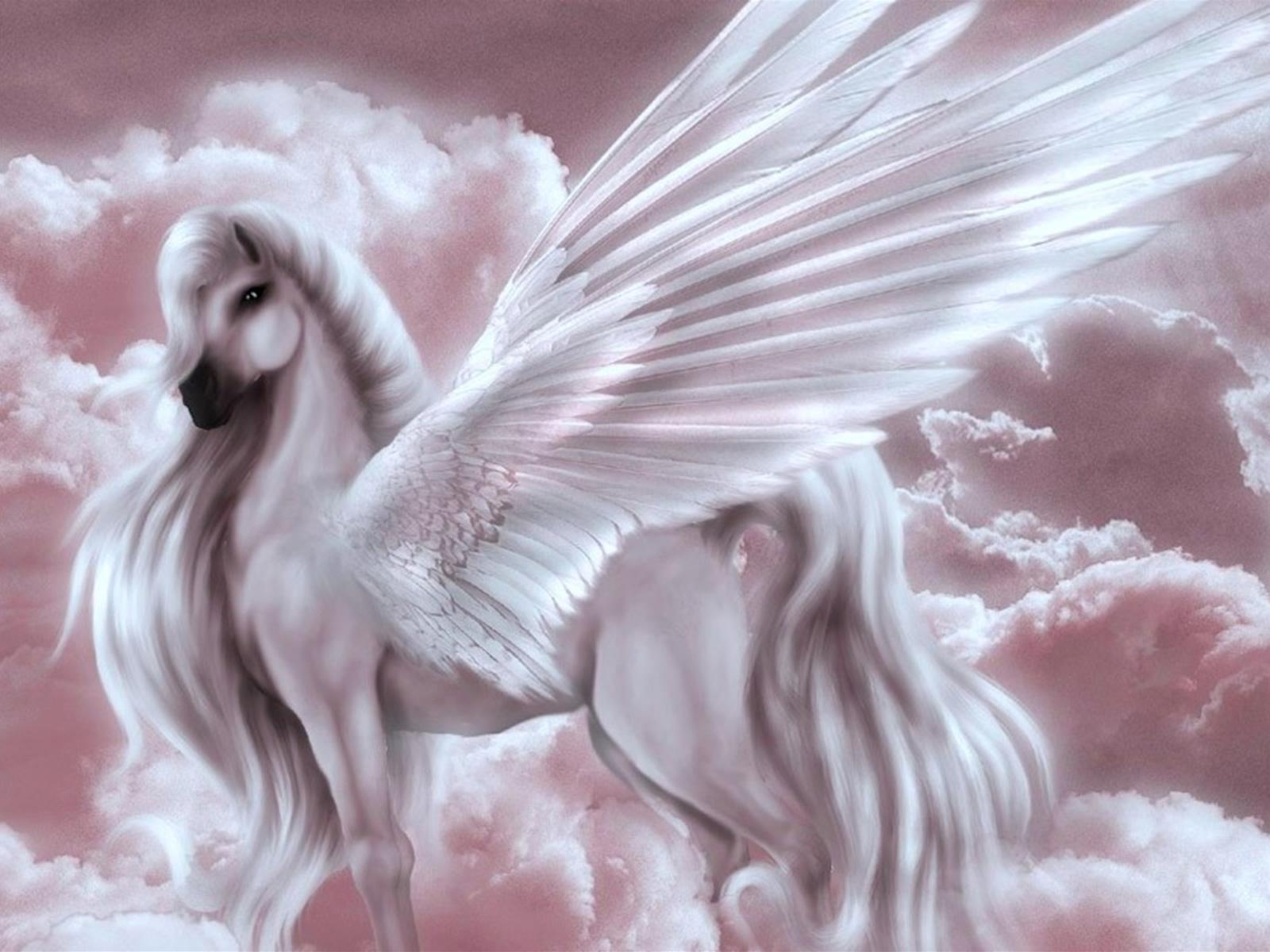 http://www.defondos.com/bulkupload/unicornios-fotos/Fantasia/Unicornios/Unicornio%20Principe.jpg