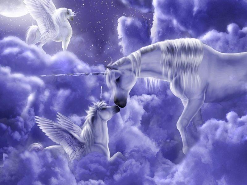 Madre Unicornio_800.jpg (800×600)