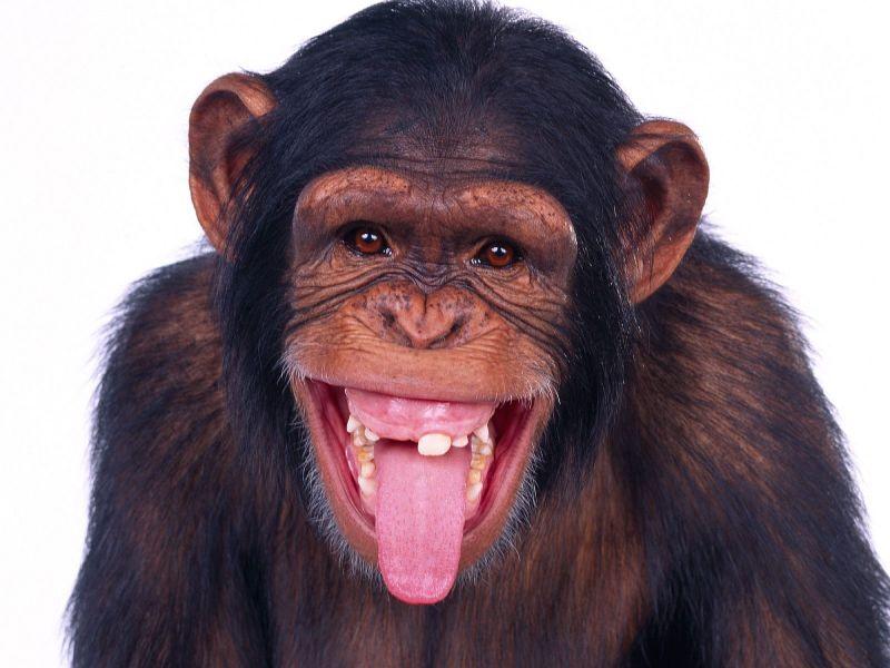 videos de risa GENTE DESNUDA # 2 Los mejores videos