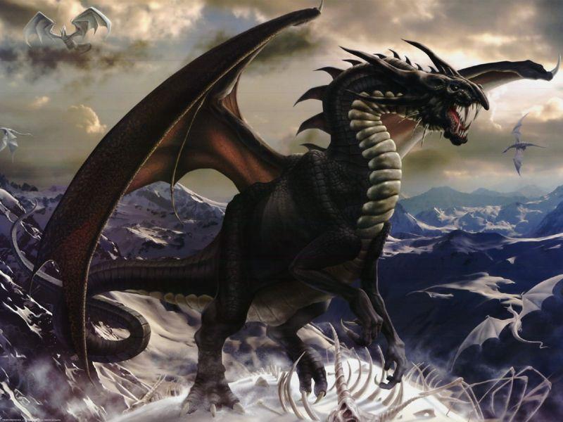 Mundo de Dragones