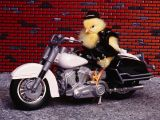 Pollo Chopper